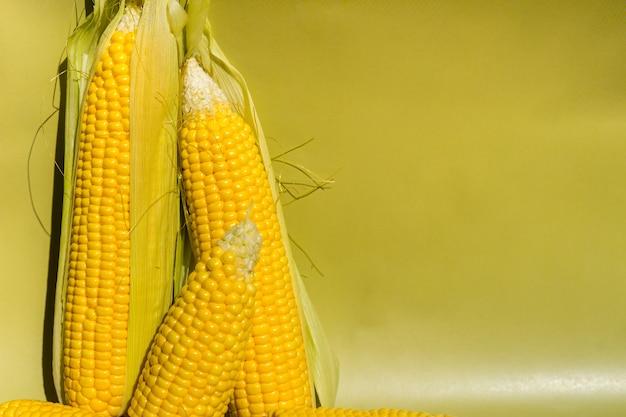 Frische gelbe maiskolben auf frischem gemüse des grünen hintergrundes