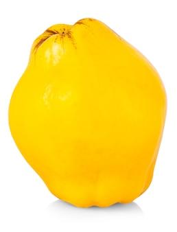 Frische gelbe quitte