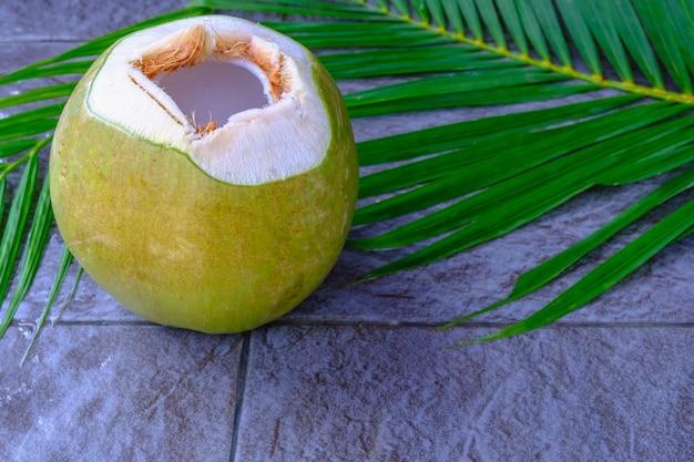 Frische grüne kokosfrucht und kokosblätter