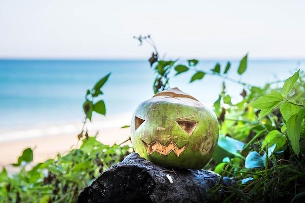Frische grüne kokosnuss ist ein symbol für halloween. an einem breiten tropischen strand liegt das gras.