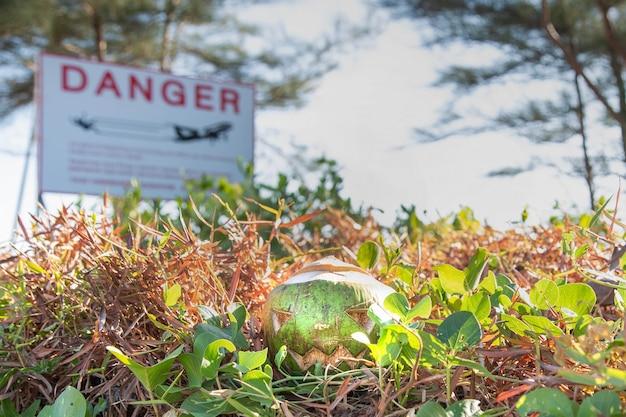 Frische grüne kokosnuss ist ein symbol für halloween mit einem geschnitzten gesicht auf einem kürbis, der auf gras liegt