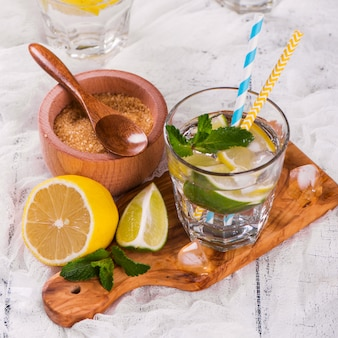 Frische hausgemachte zitronen-limonen-limonade mit minze, eiswürfeln und strohhalmen