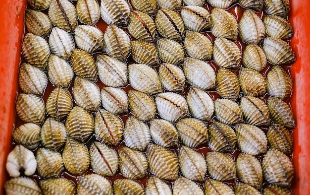 Frische herzmuscheln auf dem markt herzmuscheln meeresfrüchte herzmuscheln oder jakobsmuscheln frische rohe schalentiere