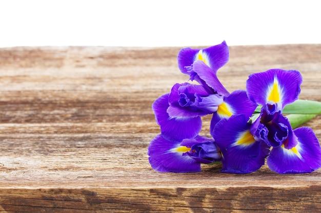 Frische iris auf hölzernem tischrand lokalisiert auf weiß
