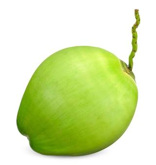 Frische junge grüne kokosnuss lokalisiert auf weiß