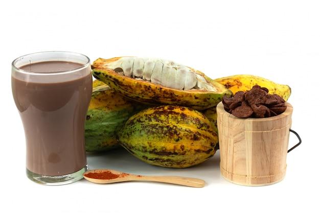 Frische kakaofrucht mit kakaoknusper (produkte aus kakao)