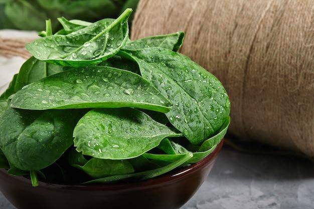 Frische, knusprige spinatblätter, frisch gepflückt mit morgentau auf den blättern