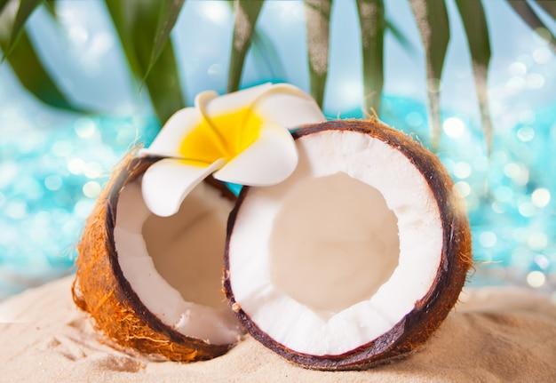 Frische kokosnuss auf dem meersand. plumeria frangipani zur dekoration. meer oder ozean, palmblatt auf dem hintergrund.