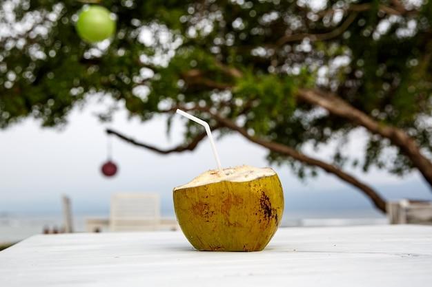 Frische kokosnuss trinkfertig.