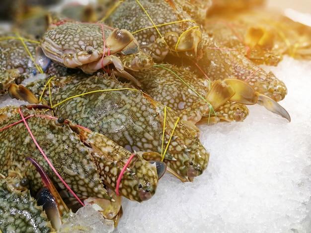 Frische krabbe auf eis am meeresfrüchtestand in einem markt für verkaufsgebrauch für das kochen