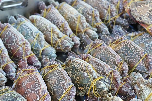 Frische krabbe im markt