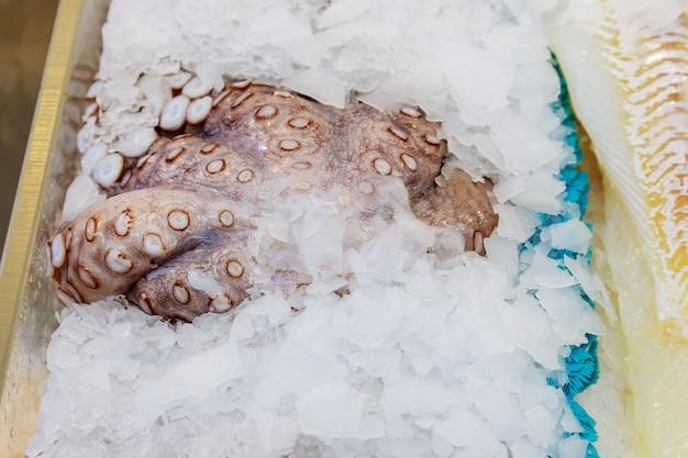 Frische kraken vorbereitet zum verkauf am markt