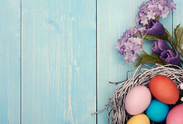 Frische lila blumen und buntes nest