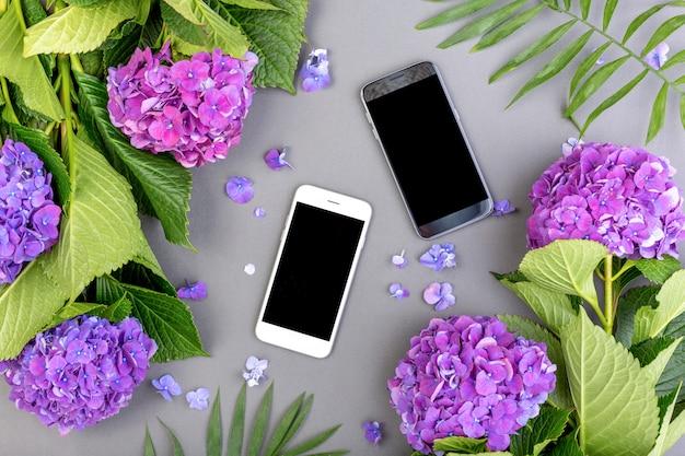Frische lila hortensien mit grünen blättern mit smartphone auf grauem hintergrund. freier platz für text. draufsicht. speicherplatz kopieren