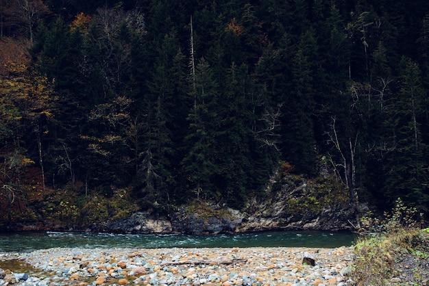 Frische luft der berge im waldherbstflusslandschaftsnatur
