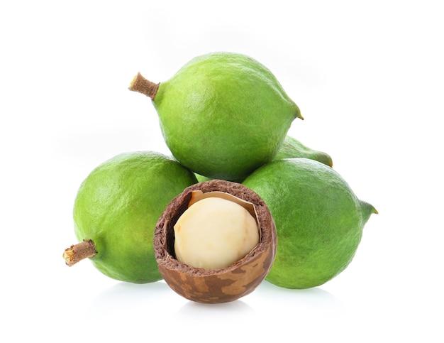 Frische macadamianüsse isoliert.