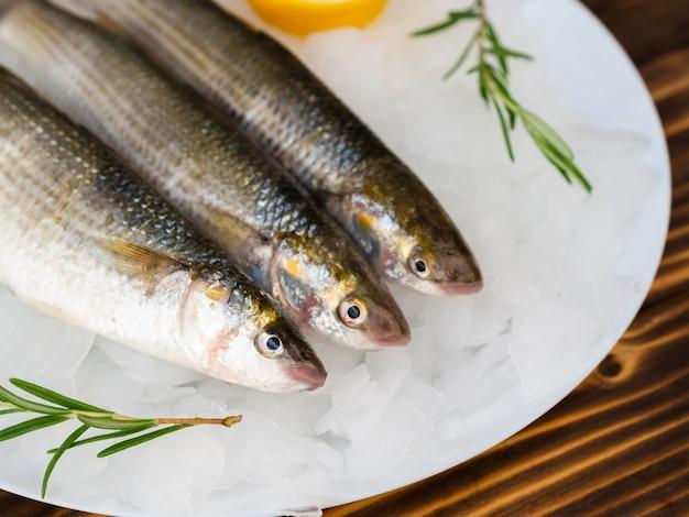 Frische makrelen der nahaufnahme auf platte mit eis