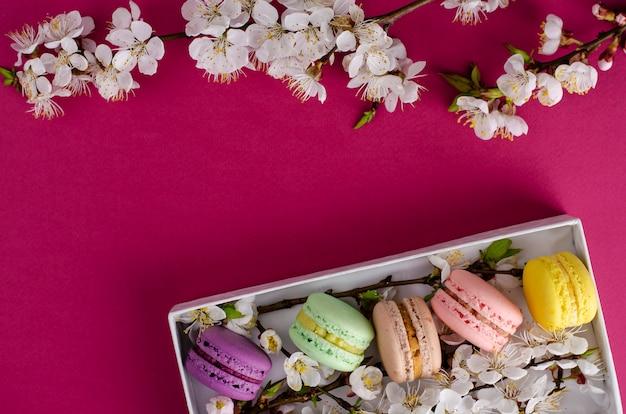 Frische makronen in einer geschenkbox mit blumen des aprikosenbaums auf fuchsie oder dunklem rosa
