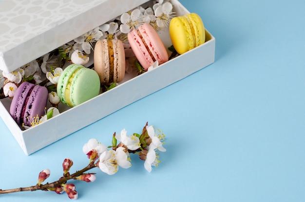 Frische makronen in einer geschenkbox mit blumen des aprikosenbaums auf pastellblau