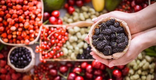 Frische maulbeere in den händen eines mädchens