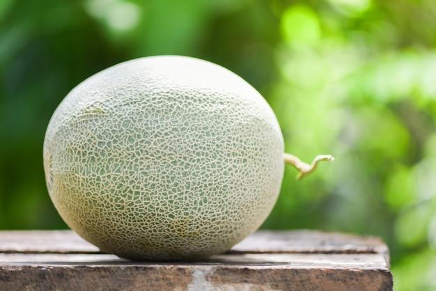 Frische melonen oder grüne melonenkantalupe auf dem holztisch und der natur