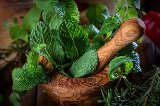 Frische minze im olivgrünen hölzernen mörser