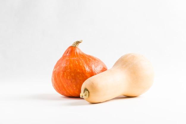 Frische orange kürbisse