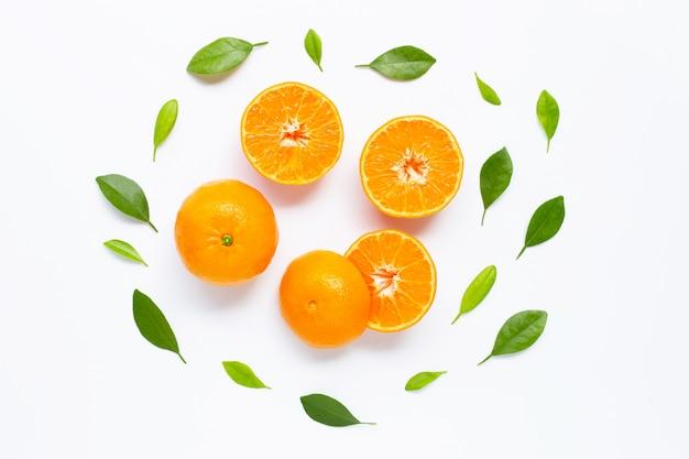 Frische orange zitrusfrucht getrennt auf weiß