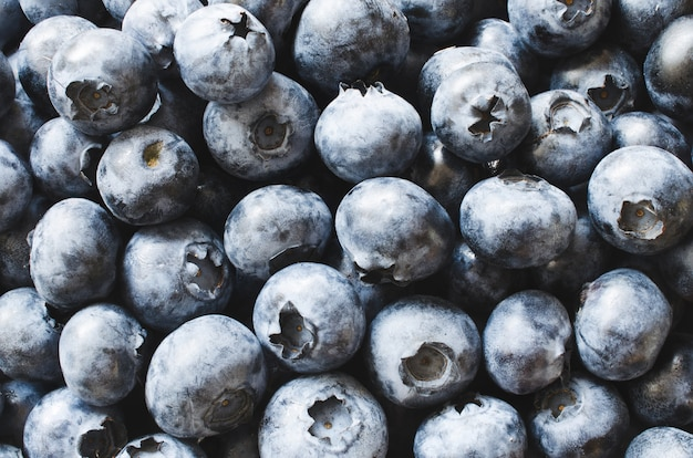 Frische organische blaubeeren der nahaufnahme.
