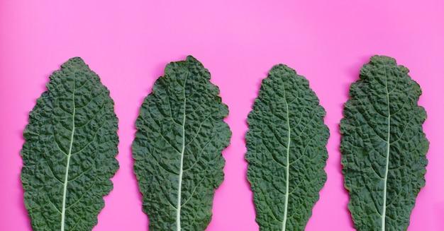 Frische organische grüne grünkohlblätter auf rosa