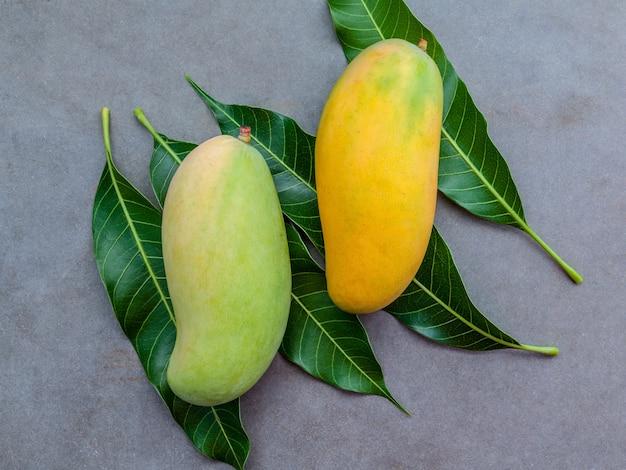 Frische organische mangos gründeten auf dunklem steinhintergrund.