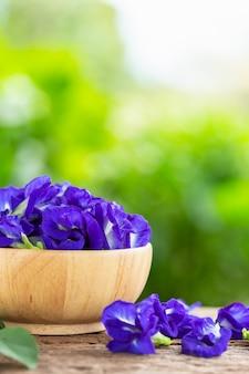 Frische purpurrote schmetterlingserbsenblume auf holztischhintergrund