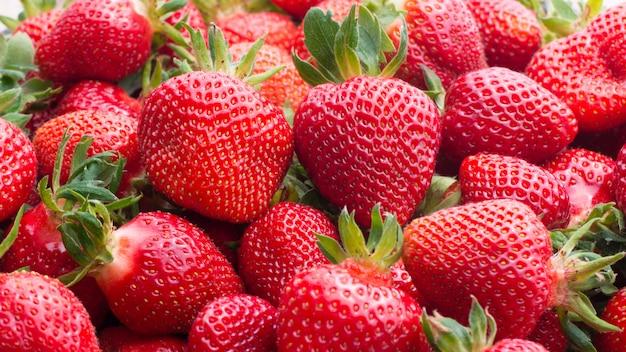 Frische reife erdbeeren