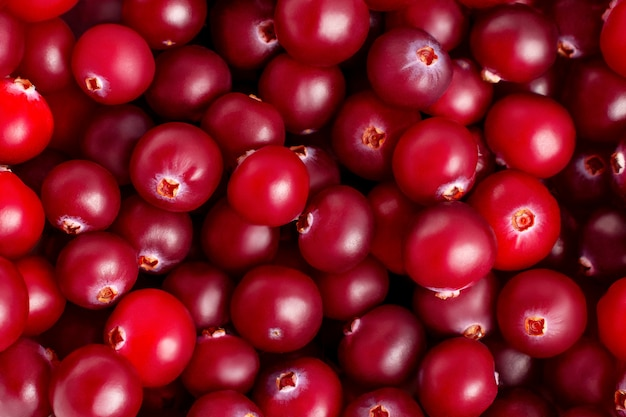 Frische reife rubin-preiselbeeren-nahaufnahme