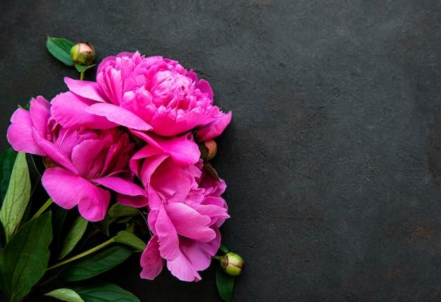 Frische rosa pfingstrosenblumengrenze an der schwarzen wand