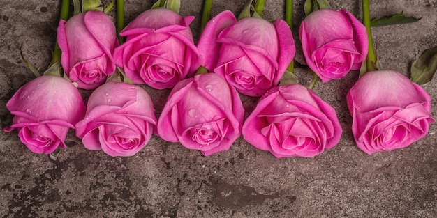 Frische rosa rosen auf strukturiertem steinbetonhintergrund. grußkarte für hochzeiten, geburtstage, 8. märz, muttertag oder valentinstag, banner