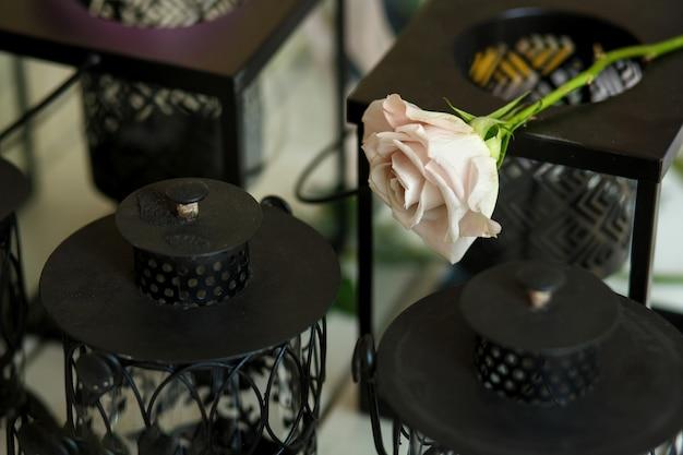 Frische rosarosenblume auf dekorativem kerzenhalterkasten
