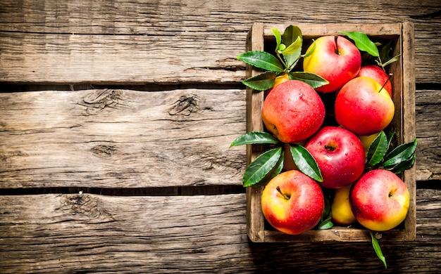 Frische rote äpfel in der holzkiste. auf hölzernem hintergrund. freier platz für text. draufsicht