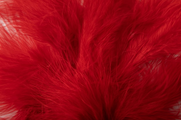 Frische rote pflanze