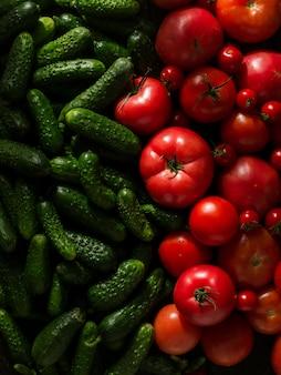 Frische rote tomaten und grüne gurken, neue gemüseernte
