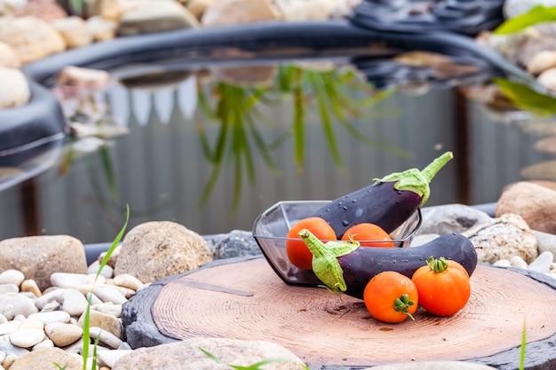 Frische saftige auberginen und tomaten auf dem hintergrund eines kleinen teiches.