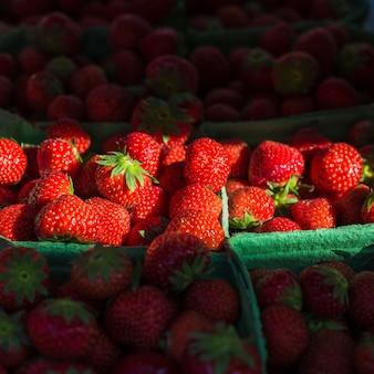 Frische saftige erdbeeren im grünen fall