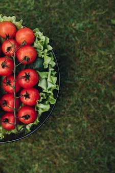 Frische saftige tomatenkopfsalatgurke im eimer auf draufsicht des grünen sommergrases