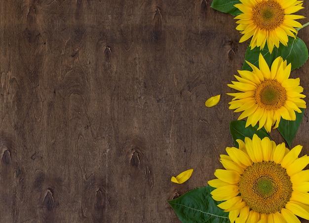 Frische schöne sonnenblumen auf draufsicht des hölzernen hintergrundes