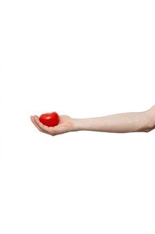 Frische tomate in der hand lokalisiert auf weißem hintergrund
