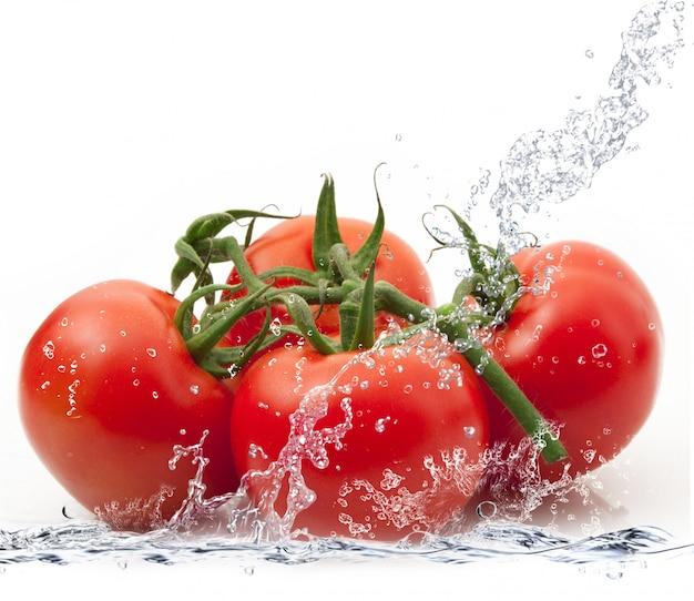 Frische tomaten, die in wasser fallen