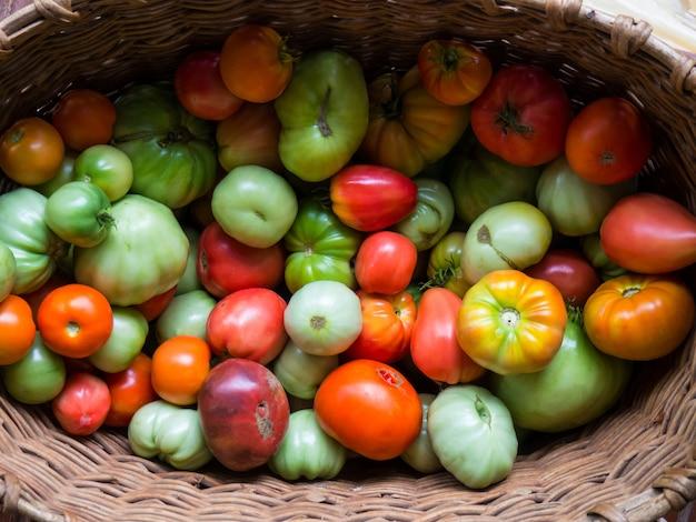 Frische tomaten in verschiedenen farben in einem korb