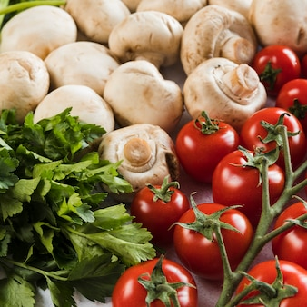 Frische tomaten, pilze und petersilie