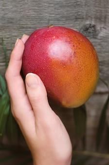 Frische tropische mango auf hölzernem.