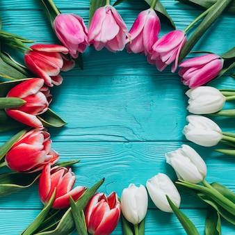 Frische tulpen um blauen hölzernen hintergrund. muttertag konzept, ansicht von oben.